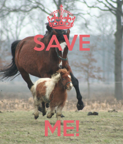 Poster: SAVE    ME!