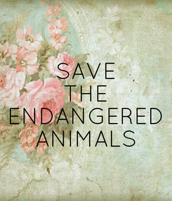 Poster: SAVE THE ENDANGERED ANIMALS