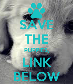 Poster: SAVE THE PUPPIES, LINK BELOW