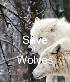 Poster:  Save The Wolves