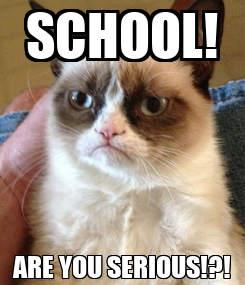 Poster: SCHOOL! ARE YOU SERIOUS!?!