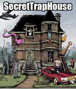 Poster: SecretTrapHouse