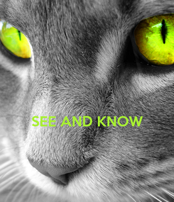Poster:   SEE AND KNOW