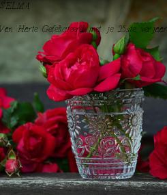 Poster: SELMA  Van Harte Gefeliciteerd met je 25ste verjaardag  dikke ZOEN van mij
