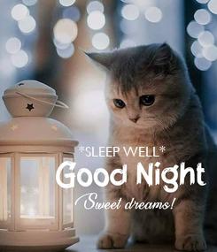 Poster: *SLEEP WELL*