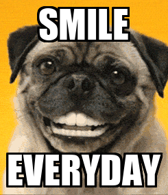 Poster: SMILE EVERYDAY