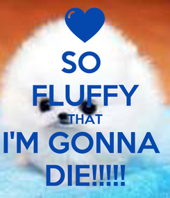 Poster: SO  FLUFFY THAT I'M GONNA  DIE!!!!!