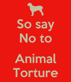 Poster: So say No to  Animal Torture