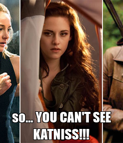 Poster:  so... YOU CAN'T SEE KATNISS!!!