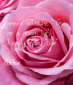 """Poster: Someone asked me, """" Give  me a reason live"""",  I simply replied, """"Love"""".   Madhve"""
