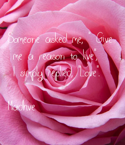 """Poster: Someone asked me, """" Give  me a reason to live"""",  I simply replied, """"Love"""".   Madhve"""