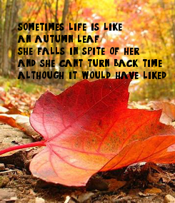 Poster: sometimes life is like