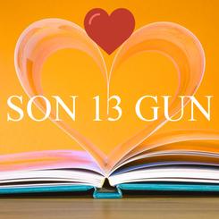 Poster:  SON 13 GUN