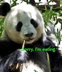 Poster: Sorry, I'm eating.