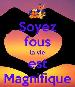 Poster: Soyez fous la vie est Magnifique