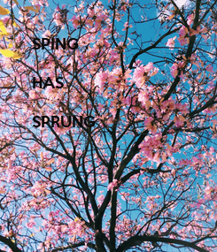Poster: SPING  HAS  SPRUNG
