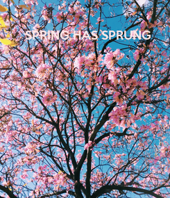 Poster: SPRING HAS SPRUNG