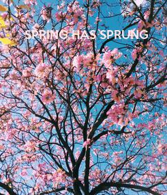 Poster: SPRING HAS SPRUNG