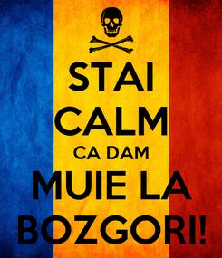 Poster: STAI CALM CA DAM MUIE LA BOZGORI!