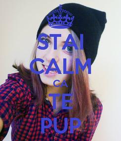 Poster: STAI CALM CA TE PUP