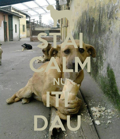 Poster: STAI CALM NU ITI  DAU