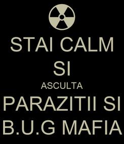 Poster: STAI CALM SI ASCULTA PARAZITII SI B.U.G MAFIA