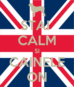 Poster: STAI  CALM SI CAINELE ON