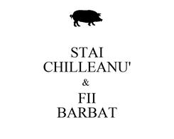 Poster: STAI CHILLEANU' &  FII BARBAT