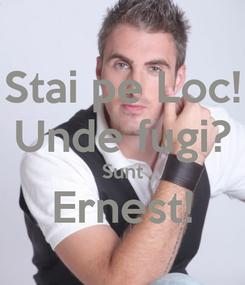 Poster: Stai pe Loc! Unde fugi? Sunt Ernest!