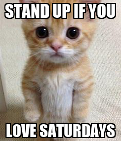 Poster: STAND UP IF YOU LOVE SATURDAYS