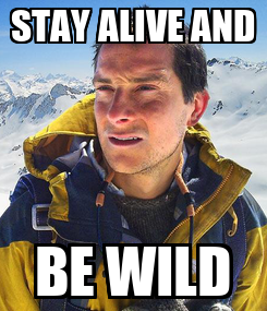 Poster: STAY ALIVE AND BE WILD
