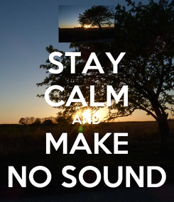 Poster: STAY CALM AND MAKE NO SOUND