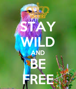 Poster: STAY WILD AND BE FREE