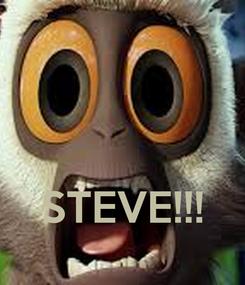 Poster:    STEVE!!!