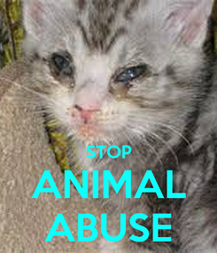 Poster:   STOP ANIMAL ABUSE