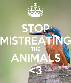 Poster: STOP MISTREATING THE ANIMALS <3