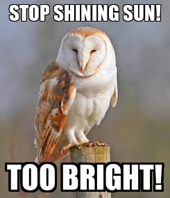 Poster: STOP SHINING SUN! TOO BRIGHT!