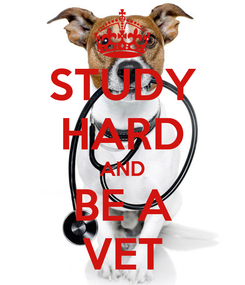 Poster: STUDY HARD AND BE A VET
