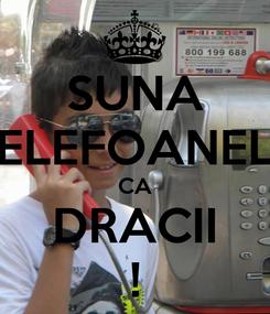 Poster: SUNA TELEFOANELE CA DRACII !
