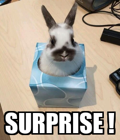 Poster:  SURPRISE !