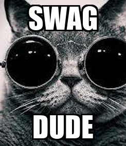 Poster: SWAG DUDE