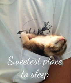 Poster:    Sweetest place to sleep
