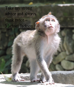 Poster: Take my strong advice and always  think twice – Michael Jackson