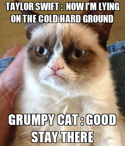 Poster: TAYLOR SWIFT :  NOW I'M LYING ON THE COLD HARD GROUND GRUMPY CAT : GOOD STAY THERE