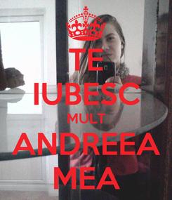 Poster: TE IUBESC MULT ANDREEA MEA