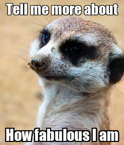 Poster: Tell me more about How fabulous I am