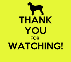 Poster: THANK YOU FOR  WATCHING!
