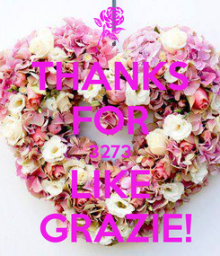 Poster: THANKS FOR 3273 LIKE  GRAZIE!