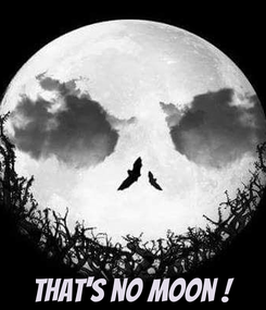 Poster:     That's no moon !