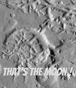 Poster:     That's the Moon !